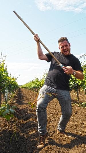 Fabian Sloboda Weingarten Wein Spaß an der Arbeit