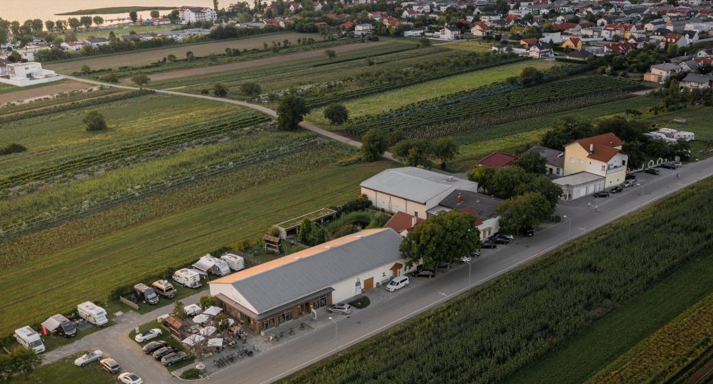 Weingut Sloboda Podersdorf am See Vogelperspektive